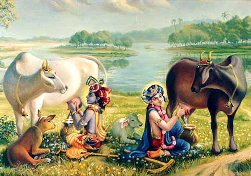 Krishna and Balarama Milking the Cows