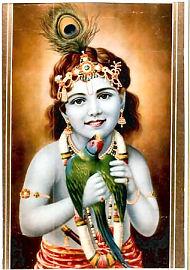 Krishna mit Parrot -Manhar